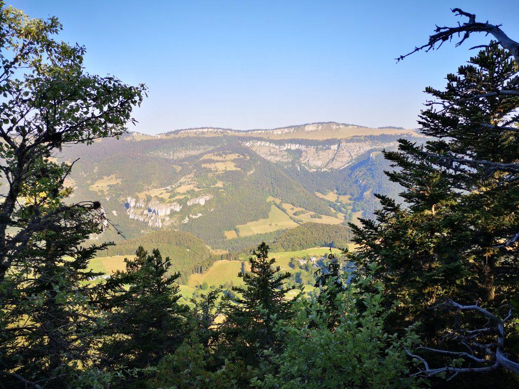 Panorama depuis le Moucherotte encadré par des arbres